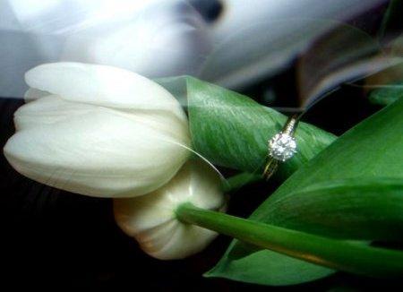 Тюльпаны с кольцом